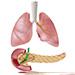Diabetes mellitus asociovaný s cystickou fibrózou